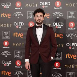 Miki Esparbé en la alfombra roja de los Premios Goya 2018
