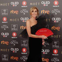 Bibiana Fernández en la alfombra roja de los Premios Goya 2018