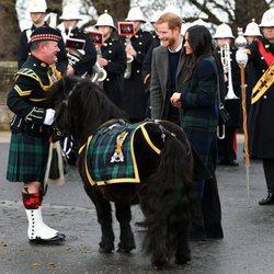 El Príncipe Harry y Meghan Markle con un poni, la mascota del Regimiento Real de Escocia