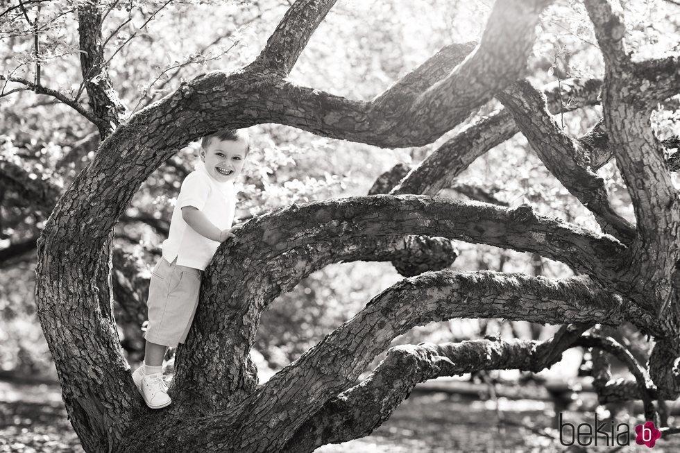 Oscar de Suecia subido a un árbol muy sonriente