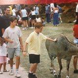 Álex y Nacho Fernández de pequeños con un animal