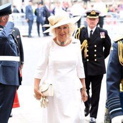 Camilla Parker en la celebración del centenario de la RAF