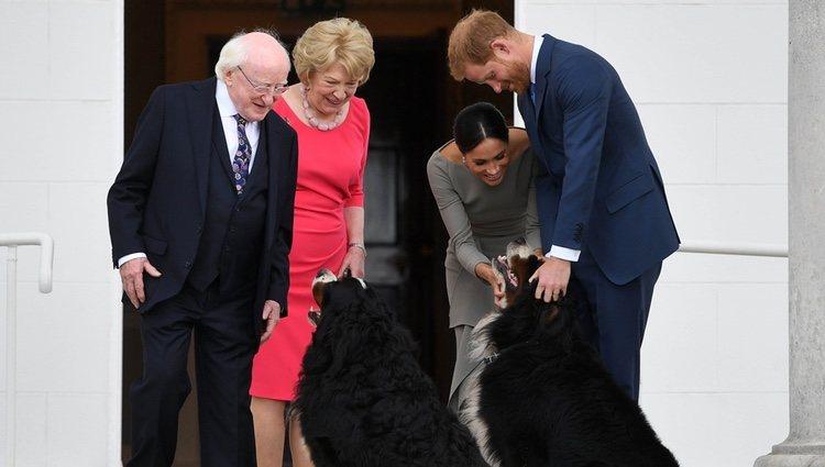 El Príncipe Harry y Meghan Markle acarician a los perros del Presidente de Irlanda