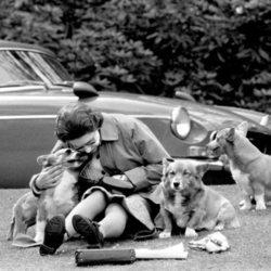 La Reina Isabel ofrece un entrañable posado con sus perros