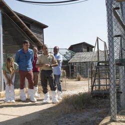 Pedro Sánchez, Begoña Gómez, Angela Merkel y su marido miran atentos a un lince ibérico en  Doñana