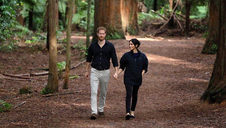 El Príncipe Harry y Meghan Markle paseando por el bosque en Nueva Zelanda