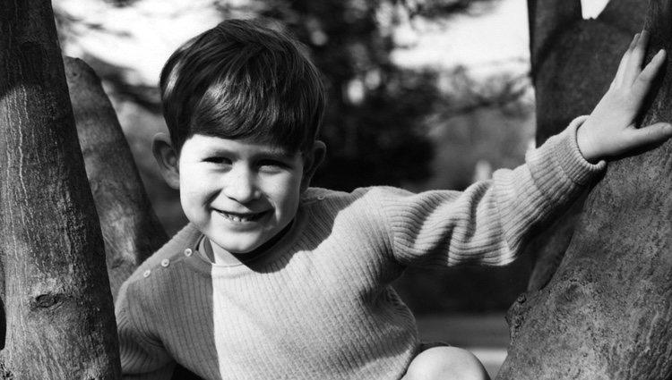 El Príncipe Carlos de pequeño subido a un árbol