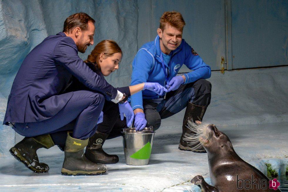Ingrid de Noruega da de comer a una foca junto a Haakon de Noruega