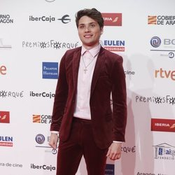 Damion en la alfombra roja de los Premios Forqué 2019
