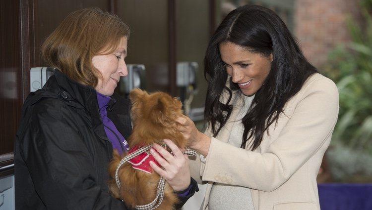 Meghan Markle acariciando a un perro durante su visita a un centro de acogida