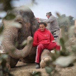La Princesa Estefanía de Mónaco posa con un elefante en un refugio de animales