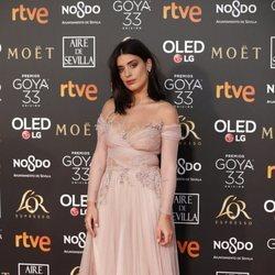 Dulceida en la alfombra roja de los Premios Goya 2019