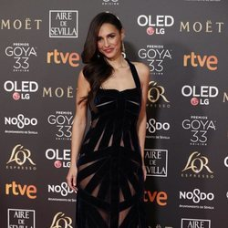Cristina Brondo en la alfombra roja de los Premios Goya 2019