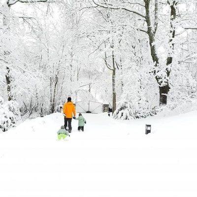 Carlos Felipe de Suecia disfruta de la nieve en Estocolmo con sus hijos Alejandro y Gabriel