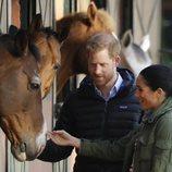 El Príncipe Harry y Meghan Markle acarician un caballo durante su visita a Marruecos