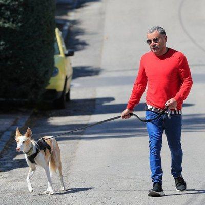 Jorge Javier Vázquez saliendo a pasear uno de sus perros