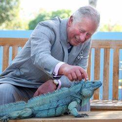 El Príncipe Carlos en su viaje a las Islas Caimán