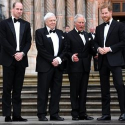 El Príncipe Carlos, el Príncipe Guillermo, el Príncipe Harry y David Attenborough en el estreno de 'Our Planet'