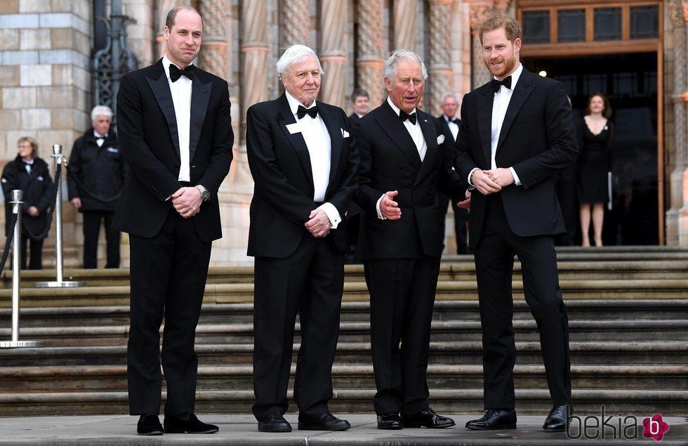 El Príncipe Carlos, el Príncipe Guillermo, el Príncipe Harry y David Attenborough en el estreno de 'Our Planet'