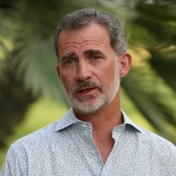 El Rey Felipe en su posado de verano 2019 en Marivent