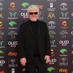 Pedro Almodóvar en la alfombra roja de los Goya 2020
