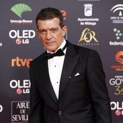 Antonio Banderas en la alfombra roja de los Goya 2020