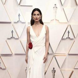 Lily Aldridge en la alfombra de los Oscar 2020