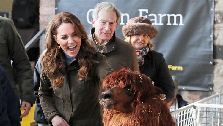 Kate Middleton con una alpaca en una granja en Irlanda del Norte