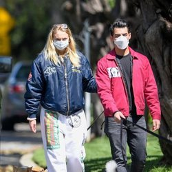 Joe Jonas y Sophie Turner paseando con sus perros