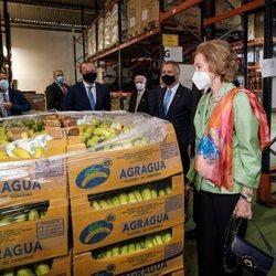 La Reina Sofía en el Banco de Alimentos de Las Palmas de Gran Canaria