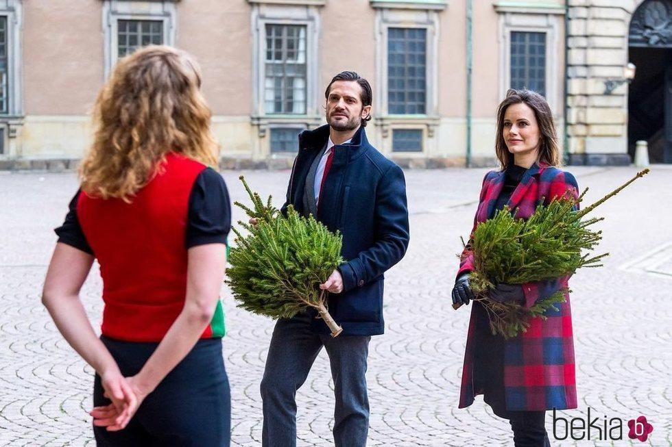Carlos Felipe y Sofia de Suecia en la recogida de árboles de Navidad tras anunciar que esperan su tercer hijo