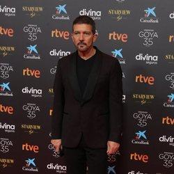 Antonio Banderas en la alfombra roja de los Goya 2021