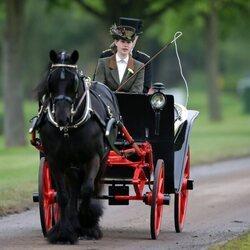 Lady Louise Mountbatten-Windsor llevado un carro de caballos