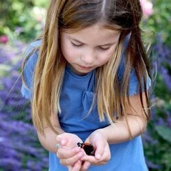 La Princesa Carlota contemplando una mariposa