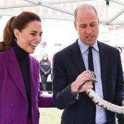 El Príncipe Guillermo con una serpiente en presencia de Kate Middleton en Irlanda del Norte