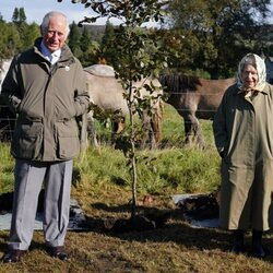 El Príncipe Carlos y la Reina Isabel plantan un árbol