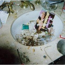 El baño de Whitney Houston destapa el abuso de drogas