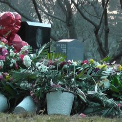 Tumba de Whitney Houston cubierta por completo de flores