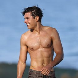 Zac Efron con el torso desnudo