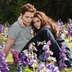 Robert Pattinson y Kristen Stewart rodando 'Amanecer. Parte 2'