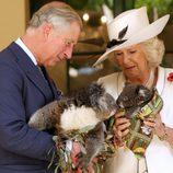 El Príncipe de Gales y la Duquesa de Cornualles sostienen koalas en Australia