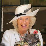 Camilla Parker Bowles, asustada al coger un koala en Australia