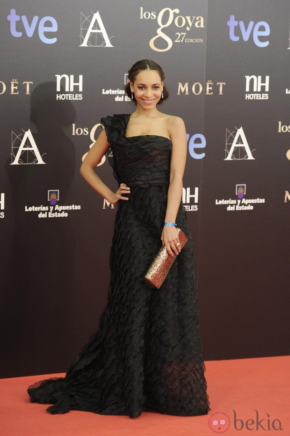 Montse Pla en la alfombra roja de los Premios Goya 2013 ...