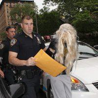 Amanda Bynes acude al juzgado con una peluca rubia