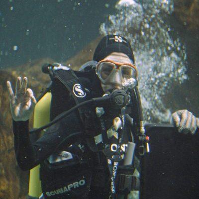 Raquel Sánchez Silva nadando entre tiburones en el Zoo de Madrid