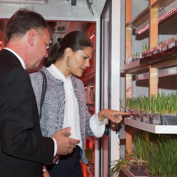 Victoria de suecia aprende jardiner a en uppsala la - Como aprender jardineria ...