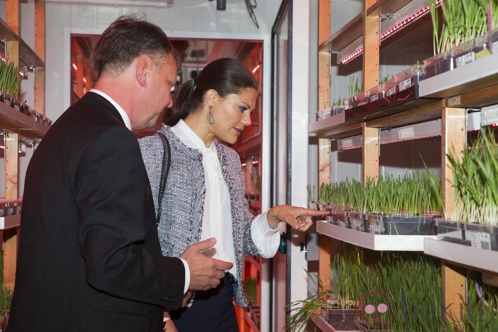 Victoria de suecia aprende jardiner a en uppsala la for Como aprender jardineria
