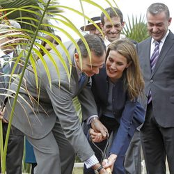 Los Príncipes Felipe y Letizia plantan una palmera en el Palmetum de Tenerife