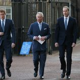 El Príncipe Carlos con sus hijos Guillermo y Harry en una conferencia