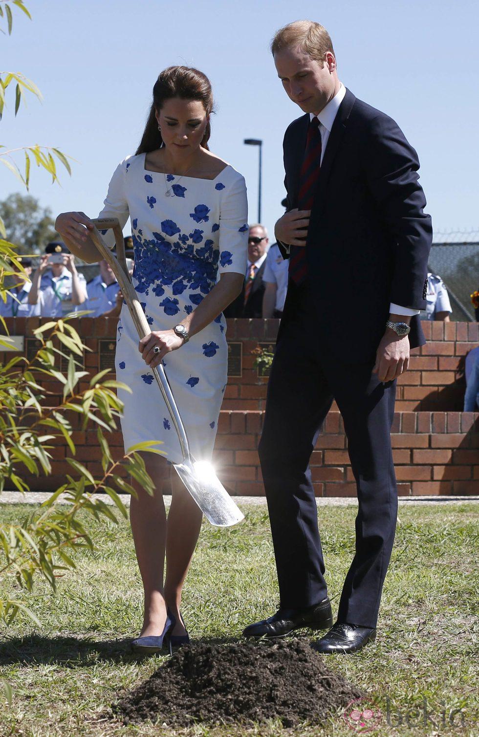 El Príncipe Guillermo y Kate Middleton plantando un árbol durante su visita a una base aéra en Australia